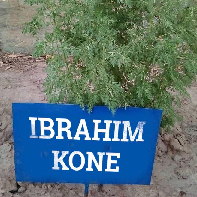 ibrahim-kone